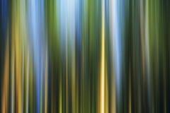 färgrik modell för bakgrund Royaltyfri Foto