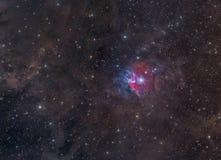 färgrik nebula orion Royaltyfria Bilder