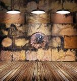 Färgrik nedfläckad lejonsten och gammal tegelstenvägg, lampljus på trägolv Arkivbild