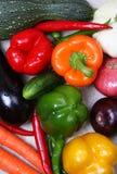 färgrik olik ny grönsak arkivfoton