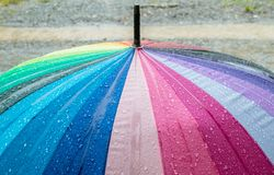 Färgrik paraplynärbild royaltyfria foton