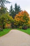 färgrik park för höst Arkivbilder