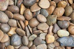 Färgrik pebble Royaltyfri Foto