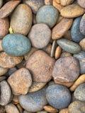 Färgrik pebble Royaltyfri Bild