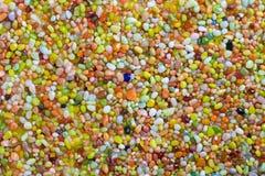 färgrik pebble för bakgrund Royaltyfria Bilder