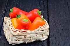 Färgrik peppar för friskhet i en gnäggande på tabellen Royaltyfria Bilder