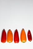 Färgrik peppar på vit bakgrund, vertikal bild Arkivfoto