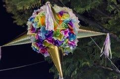 Färgrik piñata som på rymmer ett träd på natten royaltyfri bild