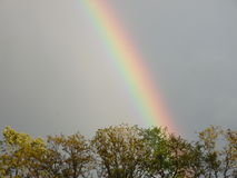 Färgrik regnbåge Arkivfoton