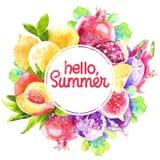 Färgrik rund ram av persikor, granatäpple, fikonträd, citron Royaltyfri Bild