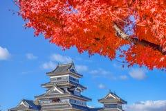 Färgrik säsongMatsumoto slott i höst Arkivfoto