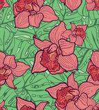 Färgrik sömlös modell med sidor och orkidér Arkivfoton