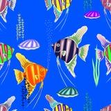 Färgrik sömlös modell som består av många marin- fisk Arkivbild