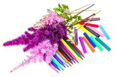 Färgrik sammansättning med blommor och färgade blyertspennor Lekmanna- nolla för lägenhet Royaltyfria Bilder