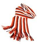 Färgrik scarf Royaltyfri Bild