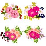 färgrik set för designelementblomma Royaltyfria Foton