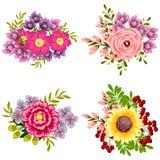 färgrik set för designelementblomma Royaltyfria Bilder