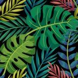 Färgrik sidamodell för tropisk vektor Gömma i handflatan med havet och träbrädet royaltyfri illustrationer