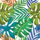 Färgrik sidamodell för tropisk vektor Gömma i handflatan med havet och träbrädet vektor illustrationer