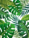 Färgrik sidamodell för tropisk vektor Sommardesign stock illustrationer