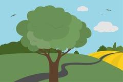 Färgrik sikt för tecknad film av ängar och fältet runt om vägen med buskar och träd med sidor under en klar himmel med moln och f Royaltyfri Bild