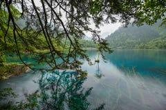 Färgrik sjö av den Jiuzhai dalnationalparken Arkivfoton