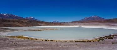Färgrik sjö i den Atacama efterrätten royaltyfria foton