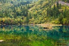 Färgrik sjö i Jiuzhaigou Royaltyfri Fotografi