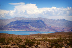 Färgrik sjömjöd, Nevada Royaltyfri Fotografi