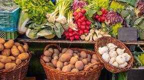 Färgrik skärm av olika grönsaker i en lokal marknad i Berlin Germany royaltyfri foto