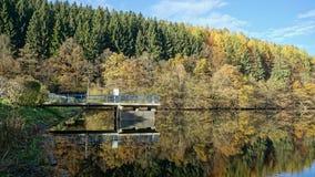 Färgrik skog på fördämningen av floden Rengse, Tyskland Arkivbild