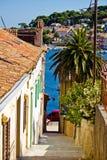 Färgrik smal gata i Mali Losinj Fotografering för Bildbyråer