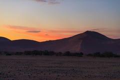 Färgrik solnedgång över den Namib öknen, Namibia, Afrika Sceniska sanddyn i panelljuset i den Namib Naukluft nationalparken, Swak arkivbild