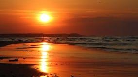 Färgrik solnedgång över havet arkivfilmer