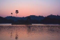 Färgrik solnedgång över Kandy sjön med konturer av palmtrees Royaltyfri Fotografi
