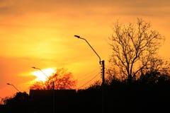 Färgrik solnedgång över vägen med träd och den elektriska polen Arkivbilder