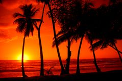 färgrik solnedgång Royaltyfria Foton