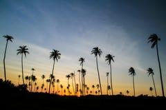 Färgrik solnedgång i det karibiskt arkivfoto