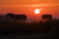 Färgrik solnedgång med guld- vasser royaltyfri foto