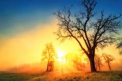 Färgrik soluppgång i idylliskt lantligt landskap arkivfoton