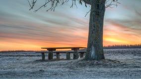 Färgrik soluppgång vid bänken och trädet Arkivfoto