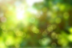 Färgrik sommar eller vårbackgoundsuddighet Royaltyfri Foto