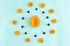 Färgrik sommarfruktmodell med melonskivor, aprikors och körsbär som isoleras på azur bakgrund Royaltyfria Bilder