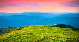 Färgrik sommarsoluppgång i carpathiambergen Arkivfoton