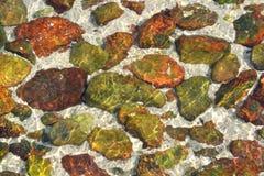 Färgrik sten i klart vatten på sjösidan royaltyfri foto
