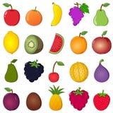 Färgrik stil för fruktsamlingstecknad film Arkivbilder
