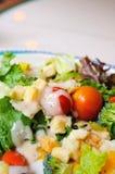 färgrik sund salladvegetarian Arkivbild