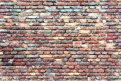 Färgrik tegelstenvägg för sömlös textur Royaltyfri Fotografi