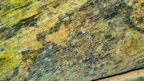 Färgrik träbrädeyttersida Fotografering för Bildbyråer