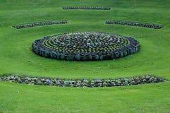 färgrik trädgård Royaltyfri Foto